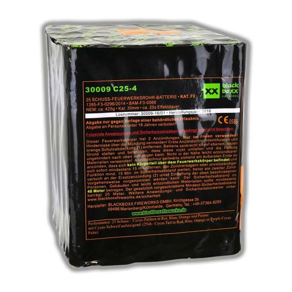 C25-4 Kategorie F3 Batteriefeuerwerk Blackboxx Fireworks