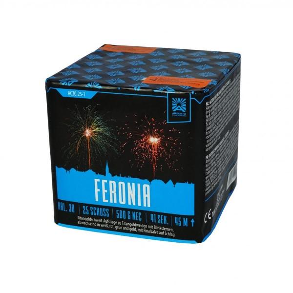 Argento Feronia Feuerwerksbatterie online kaufen