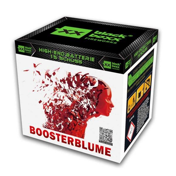 Boosterblume Batteriefeuerwerk Blackboxx Fireworks