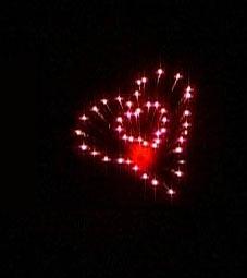 Herz Effekt im Hochzeitsfeuerwerk