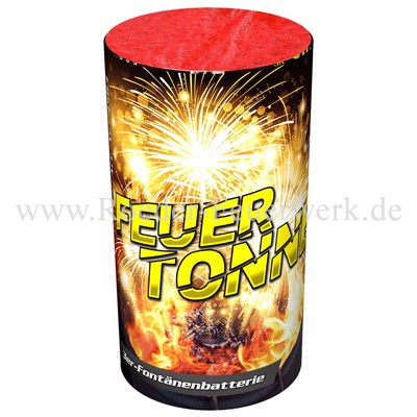 Feuertonne Leuchtfeuerwerk Fontänen Nico Feuerwerk