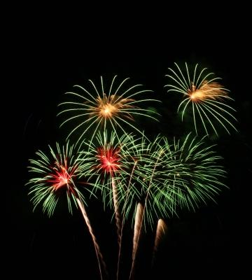 Ein edler Strauß aus Feuerblumen: Großfeuerwerksbomben mit Palmeffekten