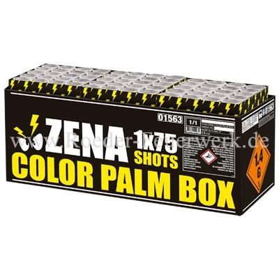 Zena Color Palm Box Verbundfeuerwerk Zena Feuerwerk