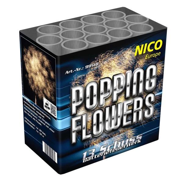 Popping Flowers Batteriefeuerwerk nico Feuerwerk