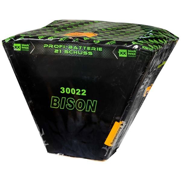 Bison von Blackboxx Feuerwerk bei Röder Feuerwerk bestellen