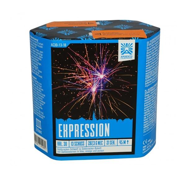 Expression von Argento Feuerwerk im Feuerwerk Shop online bestellen