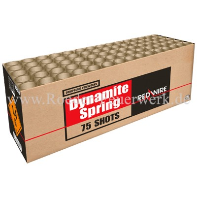 Dynamite Spring Verbundfeuerwerk Lesli Feuerwerk