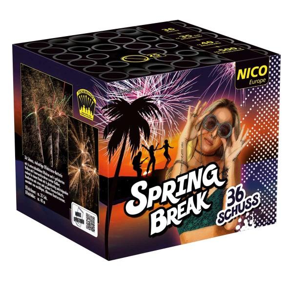 Die Nico Spring Break ist das ideale Silvesterfeuerwerk