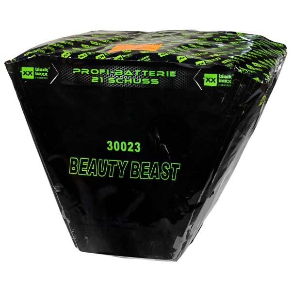 Blackboxx Feuerwerk F3 Batterie Beauty Beast online bestellen