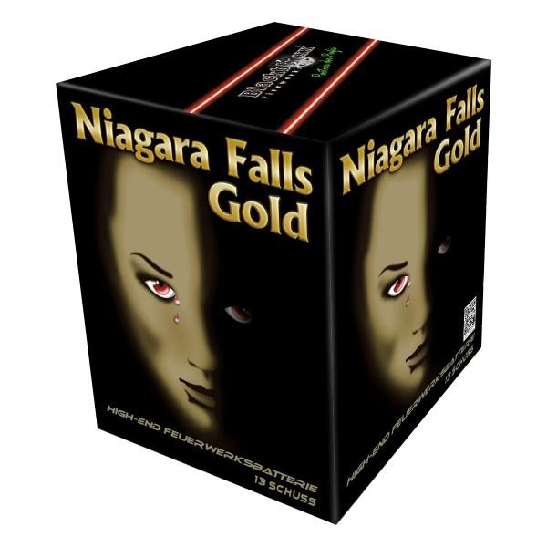 Niagara Falls gold Batteriefeuerwerk Blackboxx Fireworks